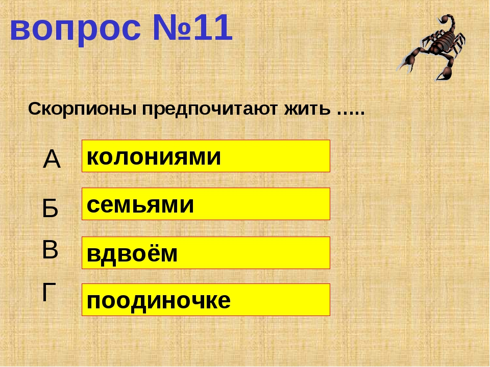 вопрос №11 Скорпионы предпочитают жить ….. А Б В Г колониями семьями вдвоём п...