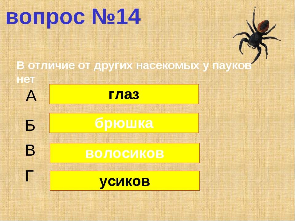 вопрос №14 В отличие от других насекомых у пауков нет А Б В Г глаз брюшка вол...