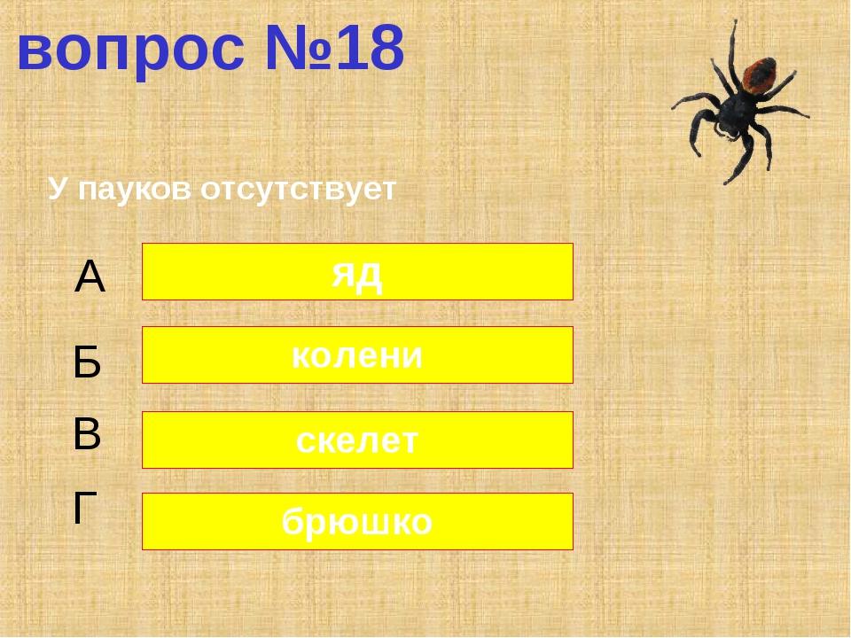 вопрос №18 У пауков отсутствует А Б В Г яд колени скелет брюшко