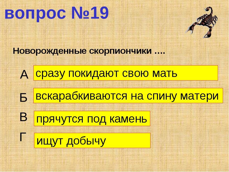 вопрос №19 Новорожденные скорпиончики …. А Б В Г сразу покидают свою мать вск...