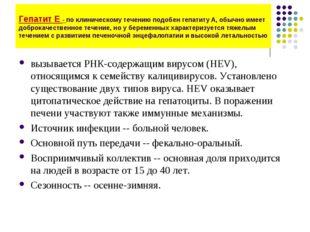 Гепатит Е - по клиническому течению подобен гепатиту А, обычно имеет доброкач
