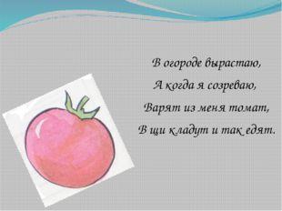 В огороде вырастаю, А когда я созреваю, Варят из меня томат, В щи кладут и т