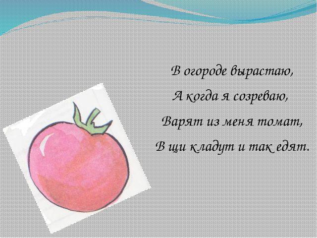 В огороде вырастаю, А когда я созреваю, Варят из меня томат, В щи кладут и т...