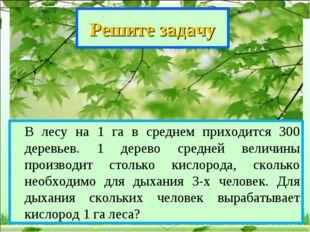 Решите задачу В лесу на 1 га в среднем приходится 300 деревьев. 1 дерево сре