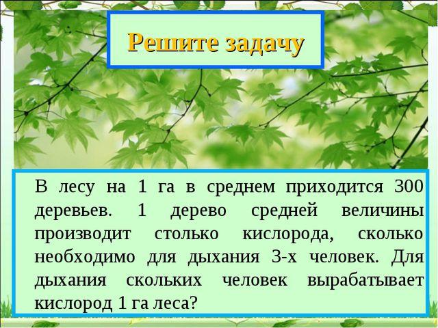 Решите задачу В лесу на 1 га в среднем приходится 300 деревьев. 1 дерево сре...