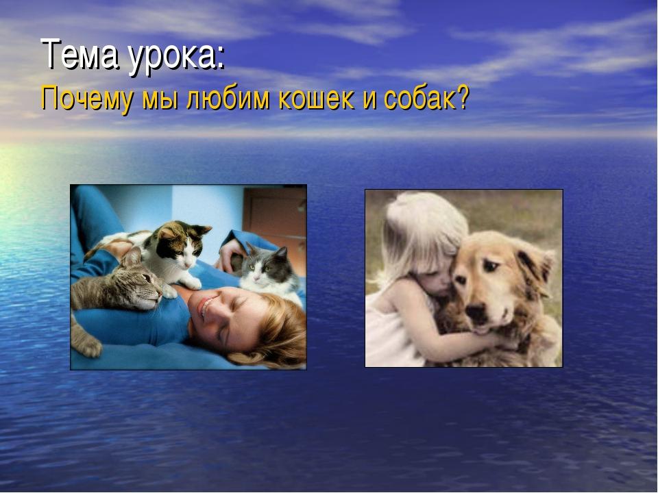 Тема урока: Почему мы любим кошек и собак?