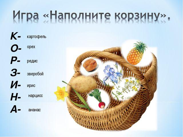 К- О- Р- З- И- Н- А- картофель орех редис зверобой ирис нарцисс ананас
