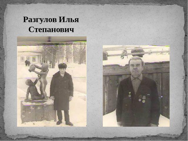 Разгулов Илья Степанович Красносельских Климентий Иванович
