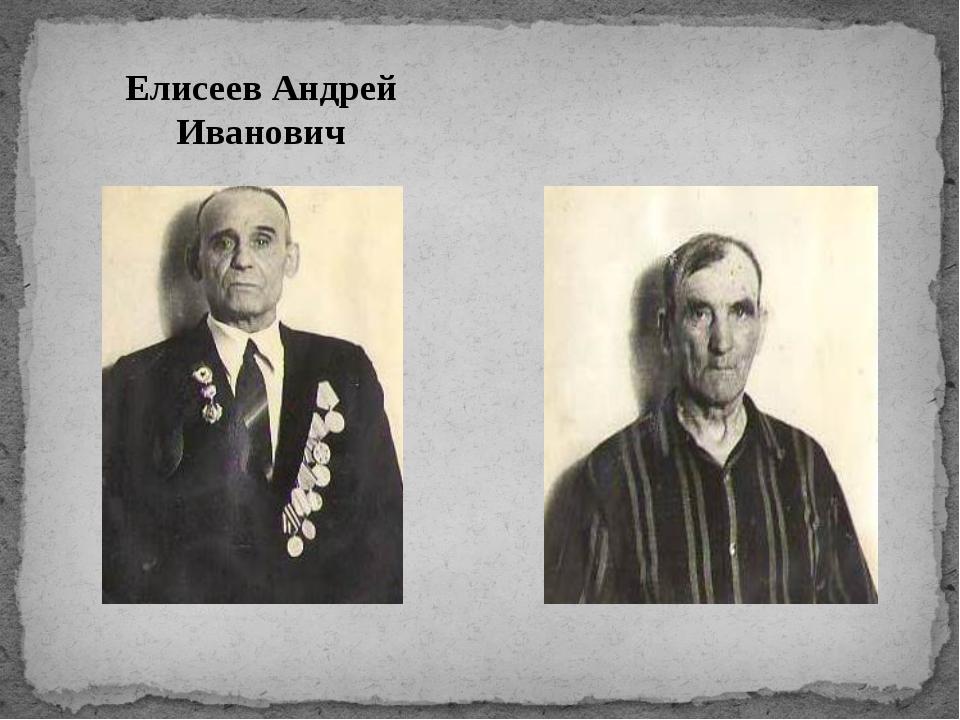 Елисеев Андрей Иванович Гончаров Петр Алексеевич