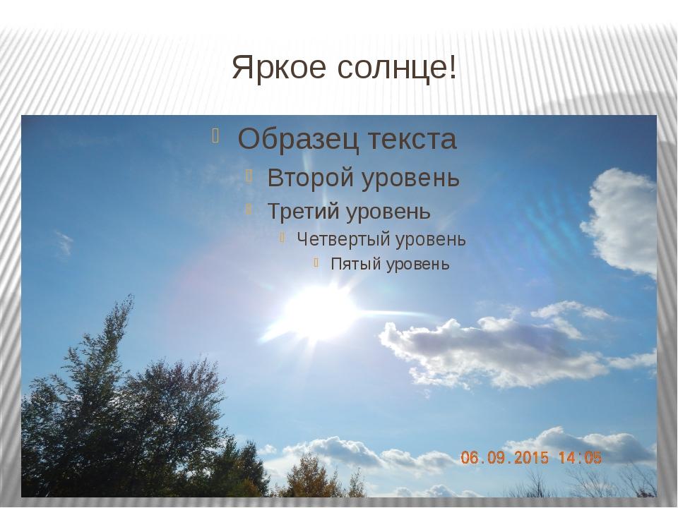 Яркое солнце!