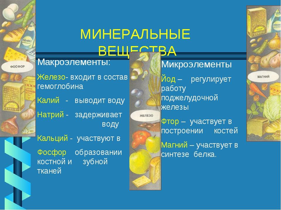 МИНЕРАЛЬНЫЕ ВЕЩЕСТВА Макроэлементы: Железо- входит в состав гемоглобина Калий...