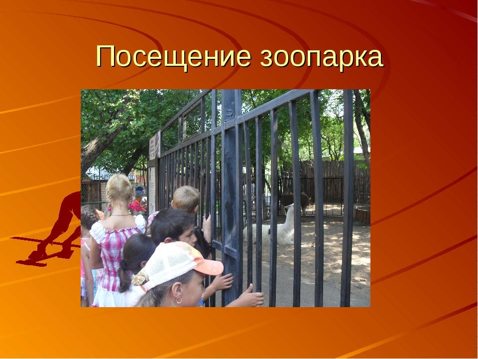 Посещение зоопарка
