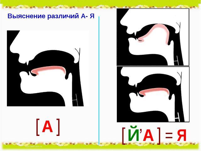 Выяснение различий А- Я
