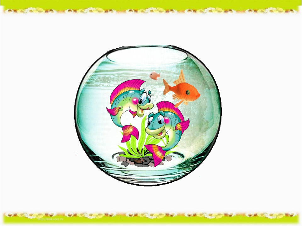Картинки девчонками, картинки аквариум с рыбками анимация