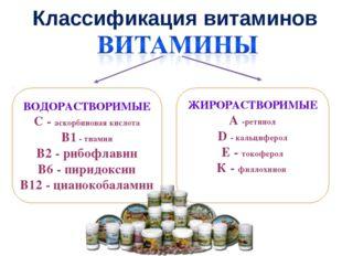 Классификация витаминов ВОДОРАСТВОРИМЫЕ С - аскорбиновая кислота В1 - тиамин