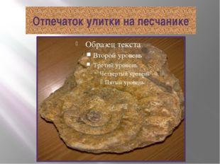 Отпечаток улитки на песчанике