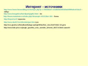 Интернет - источники http://www.forum.fotowedding.ru/viewtopic.php?p=170659&s
