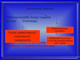 11 Мутациялық селекция Табиғи мутацияларҚолдан тудырған  мутация