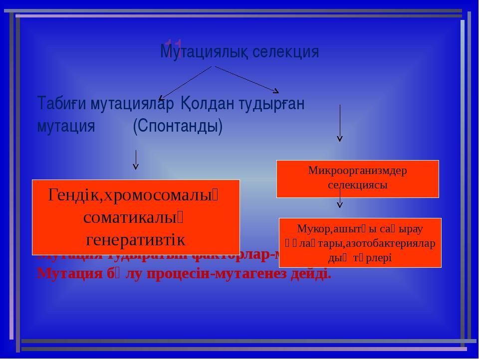 11 Мутациялық селекция Табиғи мутацияларҚолдан тудырған  мутация...