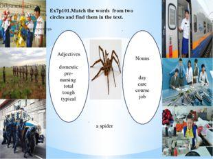 Adjectives domestic pre-nursing total tough typical Nouns day care course job