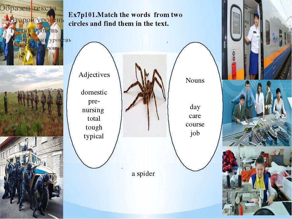 Adjectives domestic pre-nursing total tough typical Nouns day care course job...