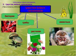 Царства живых организмов бактерии грибы растения животные 5. Царства живых ор