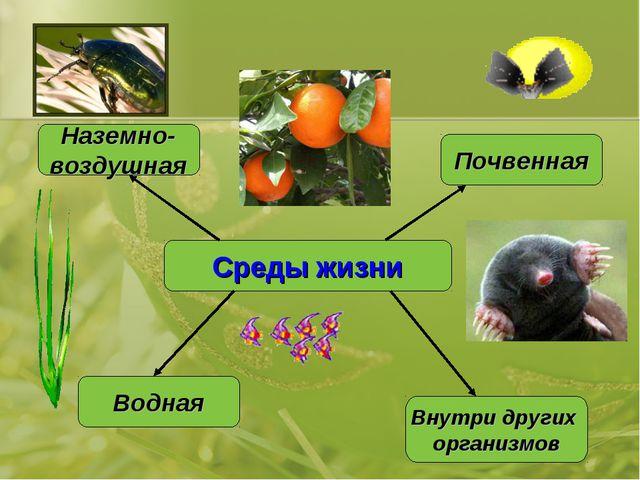 Среды жизни Водная Наземно- воздушная Почвенная Внутри других организмов