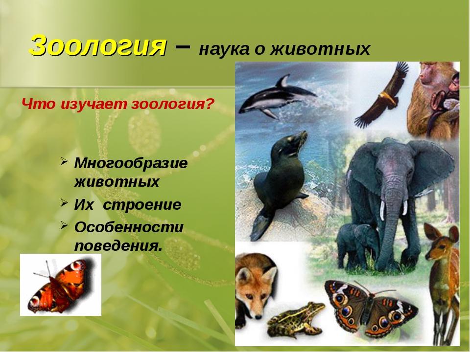 Зоология – наука о животных Многообразие животных Их строение Особенности пов...