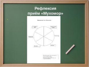 Рефлексия приём «Мухомор»