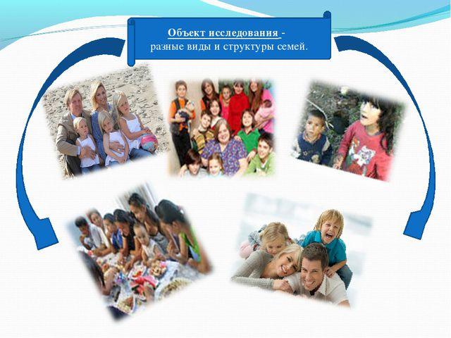 Объект исследования - разные виды и структуры семей.