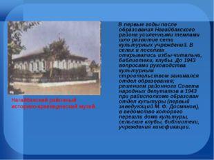 В первые годы после образования Нагайбакского района усиленными темпами шло