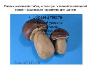Слепим маленький грибок, использую оставшийся маленький сегмент коричневого п