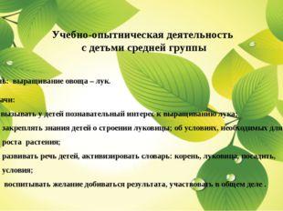 Учебно-опытническая деятельность с детьми средней группы Цель: выращивание о
