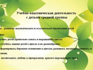Учебно-опытническая деятельность с детьми средней группы Цель: развитие экол