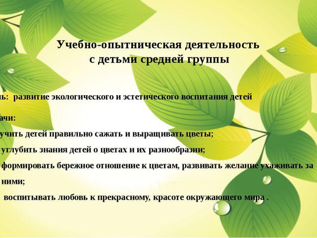 Учебно-опытническая деятельность с детьми средней группы Цель: развитие экол...