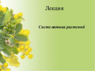Лекция Систематика растений
