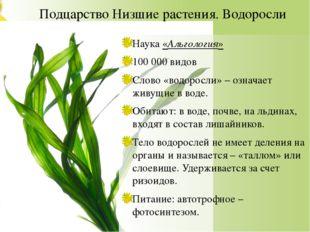 Подцарство Низшие растения. Водоросли Наука «Альгология» 100 000 видов Слово