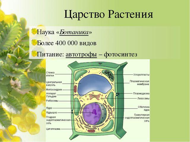 Царство Растения Наука «Ботаника» Более 400 000 видов Питание: автотрофы – фо...