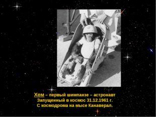 Хем – первый шимпанзе – астронавт Запущенный в космос 31.12.1961 г. С космодр