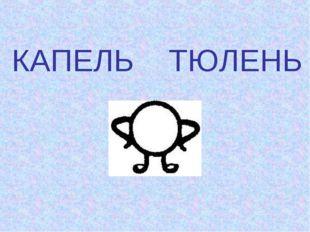 КАПЕЛЬ ТЮЛЕНЬ