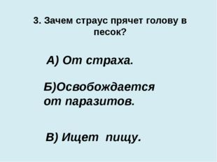 3. Зачем страус прячет голову в песок? В) Ищет пищу. А) От страха. Б)Освобожд