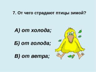 7. От чего страдают птицы зимой? В) от ветра; А) от холода; Б) от голода;