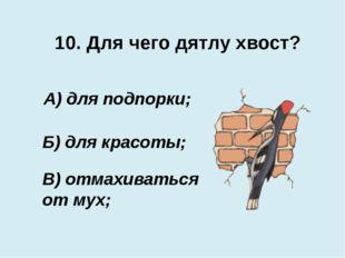10. Для чего дятлу хвост? В) отмахиваться от мух; А) для подпорки; Б) для кра