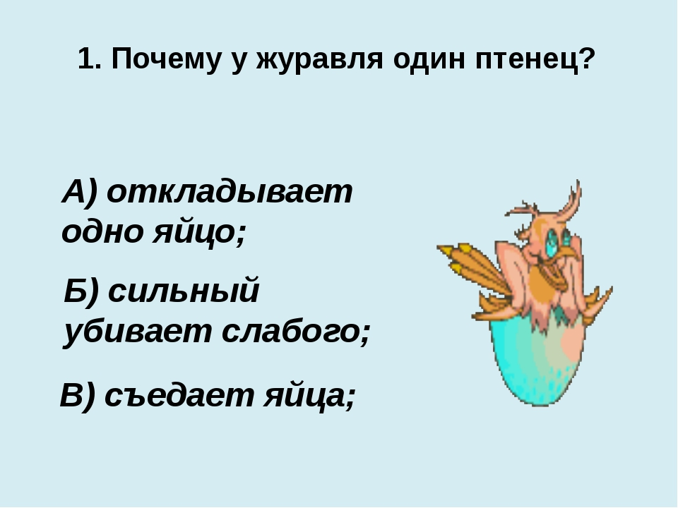 1. Почему у журавля один птенец? В) съедает яйца; А) откладывает одно яйцо; Б...