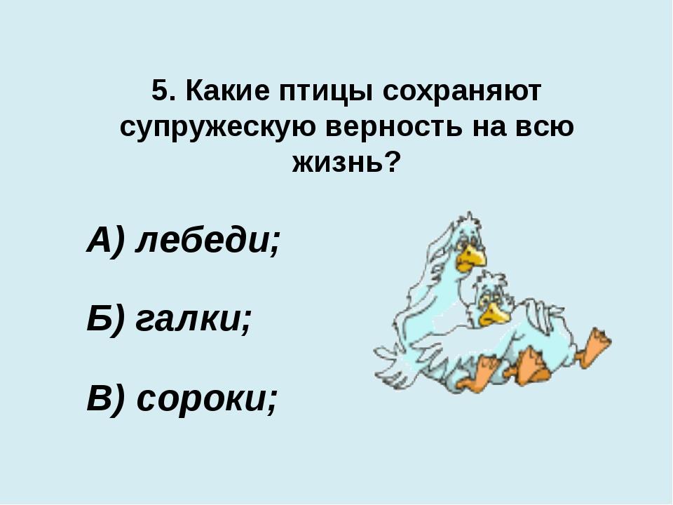 5. Какие птицы сохраняют супружескую верность на всю жизнь? В) сороки; А) леб...
