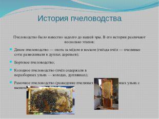 История пчеловодства Пчеловодство было известно задолго до нашей эры. В его и