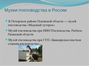 Музеи пчеловодства в России В Печорском районе Псковской области— музей пчел