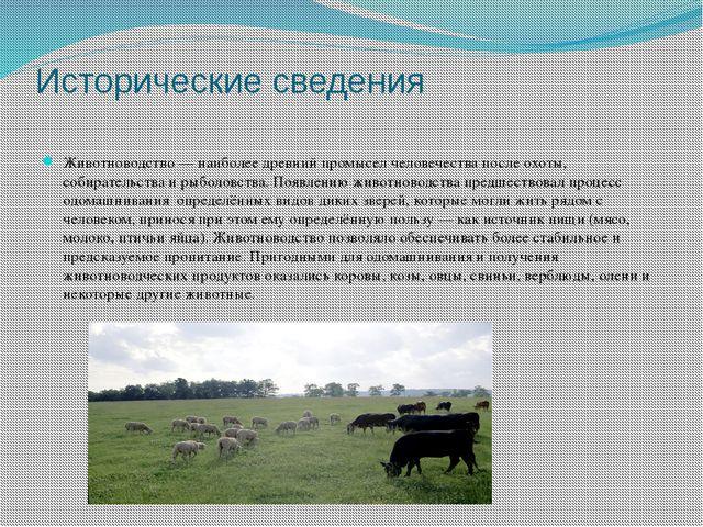 Исторические сведения Животноводство— наиболее древний промысел человечества...