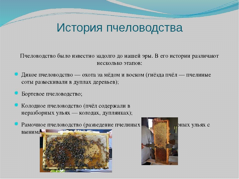 История пчеловодства Пчеловодство было известно задолго до нашей эры. В его и...