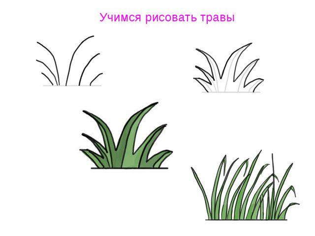 Учимся рисовать травы